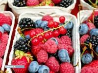 Sortowanie owoców praca dla każdego