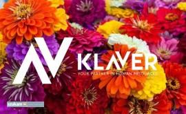 Kwiaty cięte i doniczkowe-praca Holandia