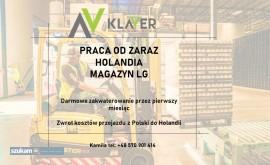 Order picker- magazyn w Holandii