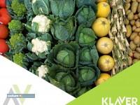 Owoce / warzywa – produkcja w Holandii